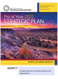 2021 Fiscal Year Strategic Plan Cover