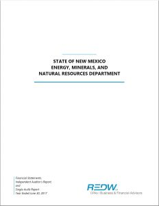 2017 Financial Statement Cover