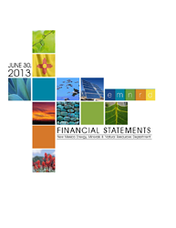 2013 Financial Statement Cover