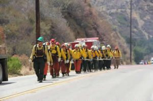 A line of firefighters walking along a road