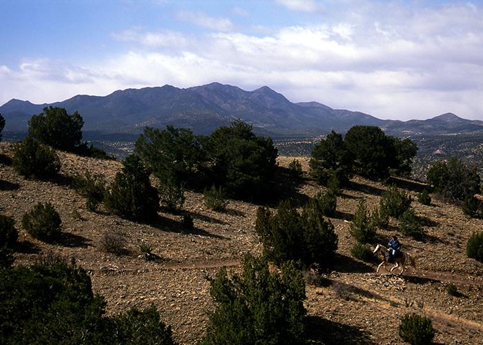 Horseback riding in Cerrillos