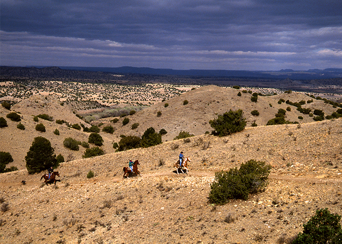 3 people horseback riding