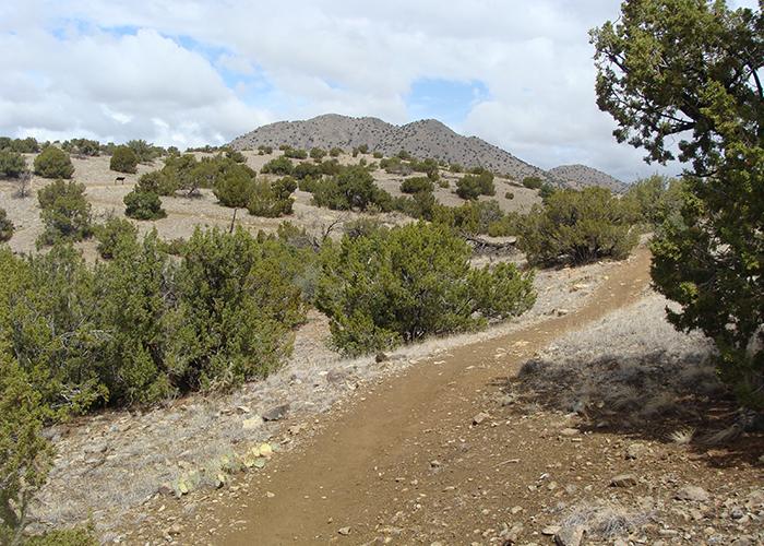 Cerillos Hills trail