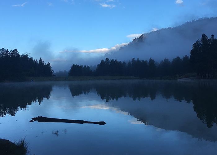 Mist over Fenton Lake