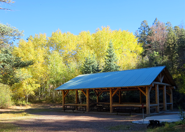 Shelter with yellow trees