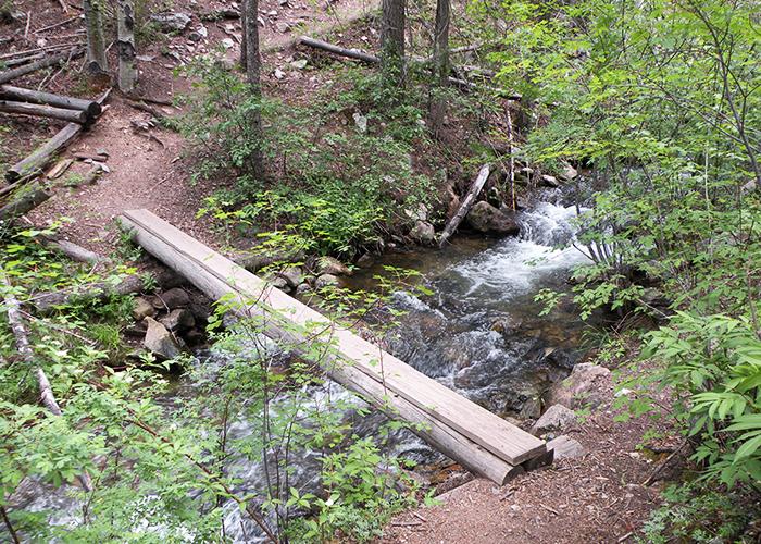 Log over stream and rocks