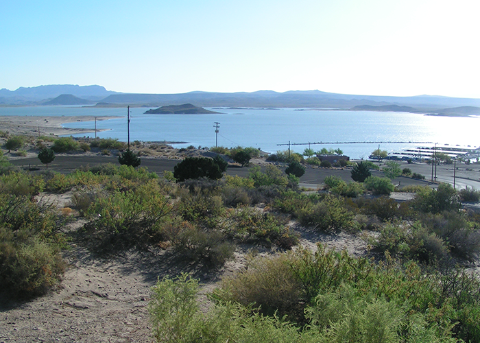 Scenery of Elephant Butte