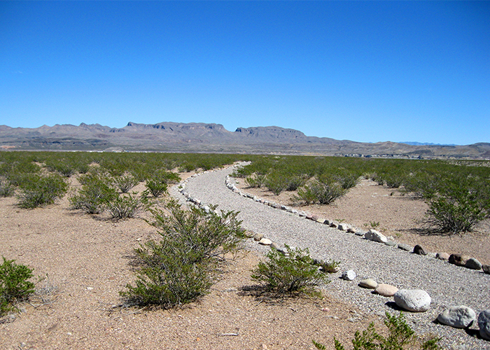 Pathway with rocks