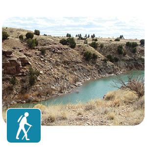 Trail by stream