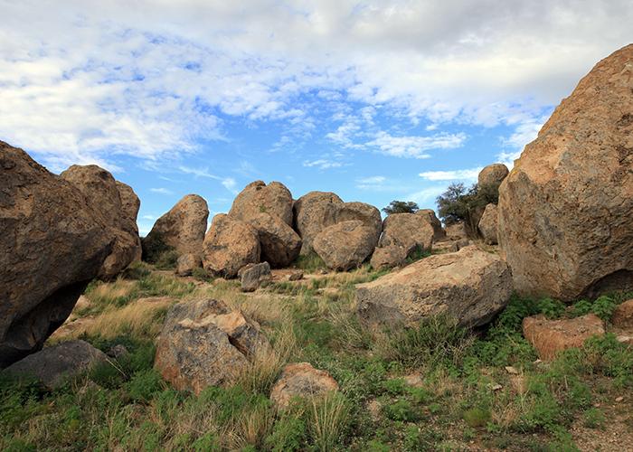 Rocks at park