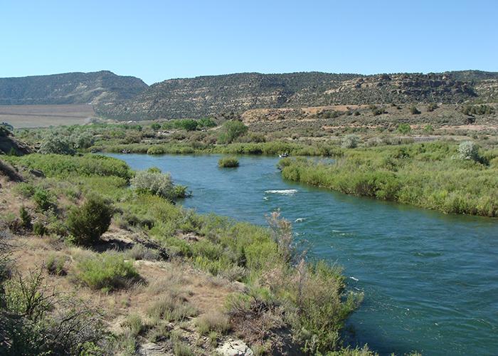 Scenery at Navajo Lake