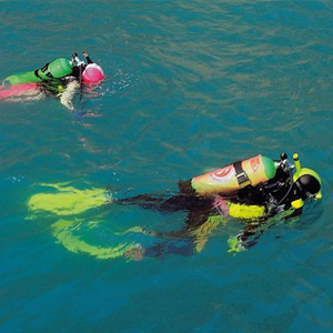 Two scuba divers with their faces down in the water